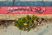 Duelling Graffiti on Red Curb, 2010